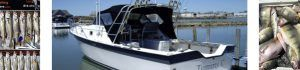 Put-in-Bay Char-Tom Sport Fishing Charter